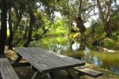 Picnic bench by the river